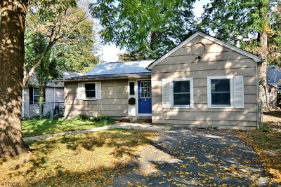 Parsippany Single Family Home For Sale: 6 Sioux Ave