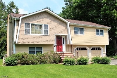 Mendham Boro, Mendham Twp. Single Family Home For Sale: 1a Sterling Ave