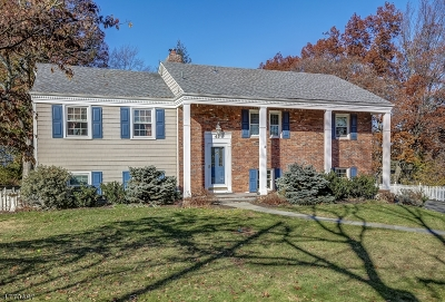 Morris Twp. Single Family Home Active Under Contract: 43 Chimney Ridge Dr