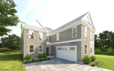 Springfield Single Family Home For Sale: 48 Warwick Cir