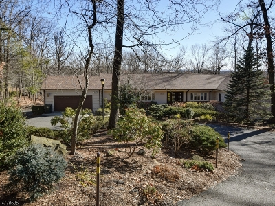 Mountainside Boro Single Family Home For Sale: 1543 Deer Path
