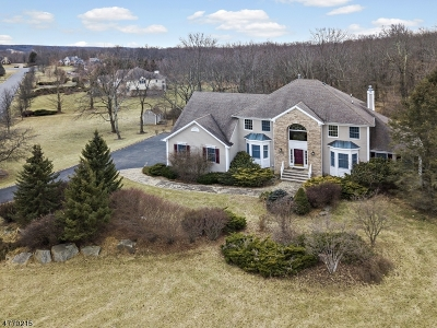 Tewksbury Twp. Single Family Home For Sale: 10 Terrill Dr