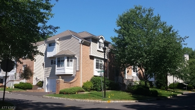 Long Hill Twp Condo/Townhouse For Sale: 55 Woods End Rd