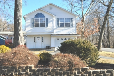 Roxbury Twp. Single Family Home For Sale: 508 Mansel Dr