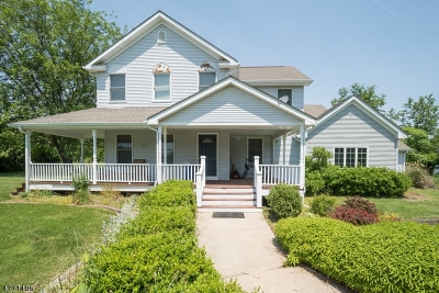 Alexandria Twp. Single Family Home For Sale: 536 Woolf Rd