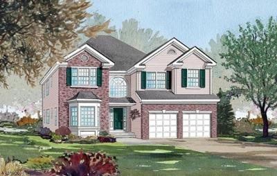 Franklin Twp. Single Family Home For Sale: 97 Willocks Cir