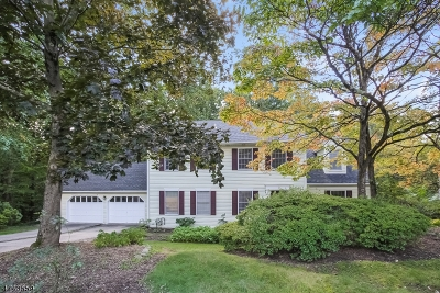 Bernards Twp., Bernardsville Boro Single Family Home For Sale: 41 Maple Village Ct
