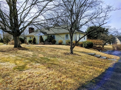Bernards Twp., Bernardsville Boro Single Family Home For Sale: 34 Fairview Dr E