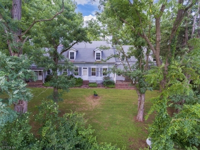 Readington Twp. Single Family Home For Sale: 187 Rockafellows Mill Rd