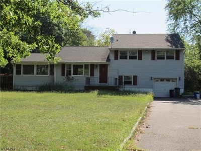 Piscataway Twp. Single Family Home For Sale: 301 River Rd