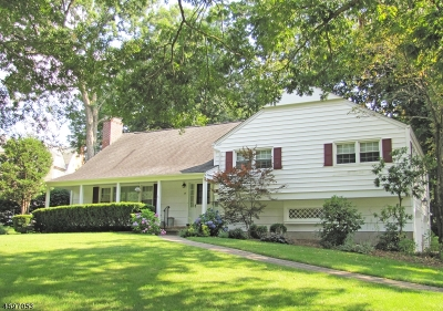 Morris Twp., Morristown Town Single Family Home For Sale: 19 Oak Park Dr