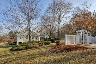 Mendham Boro, Mendham Twp. Single Family Home For Sale: 79 Pleasant Valley Rd