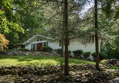 Single Family Home For Sale: 545 Dorchester Dr