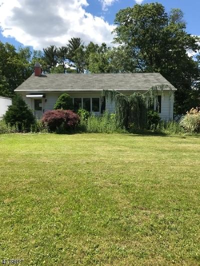 Bridgewater Twp. Single Family Home For Sale: 526 Vanderveer Rd