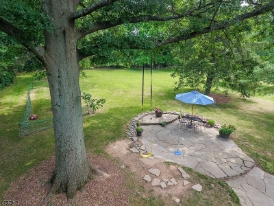 Bernards Twp., Bernardsville Boro Single Family Home For Sale: 480 King George Rd