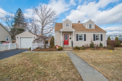 Morris Twp. Single Family Home For Sale: 29 Sherman Ave