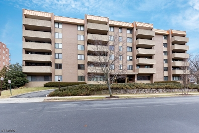 Summit City NJ Condo/Townhouse For Sale: $950,000