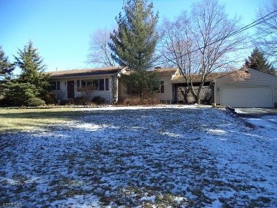 Alexandria Twp. Single Family Home For Sale: 374 Mechlin Corner Rd