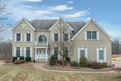 Mount Olive Twp. Single Family Home For Sale: 17 Sovereign Dr