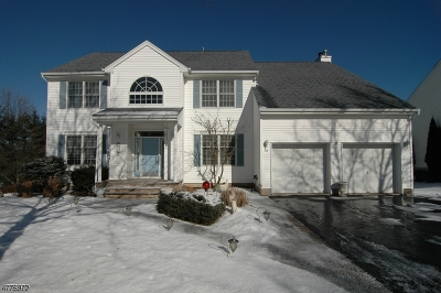 Roxbury Twp. Single Family Home For Sale: 26 Hemingway Dr