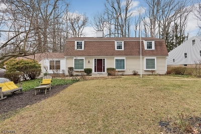 Fanwood Boro Single Family Home For Sale: 51 King St