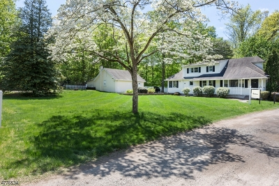 Franklin Lakes Boro Single Family Home For Sale: 519 Harriet Pl