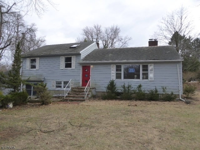 Parsippany Single Family Home For Sale: 11 Friar Rd