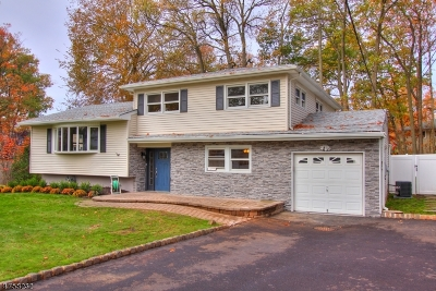 Scotch Plains Twp. Single Family Home For Sale