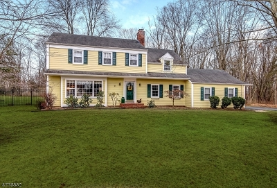 Bernards Twp. Single Family Home For Sale: 1270 Mount Airy Rd