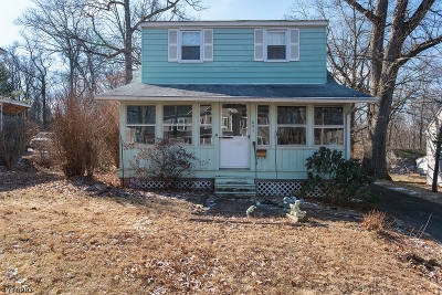 Berkeley Heights Single Family Home For Sale: 657 Plainfield Ave