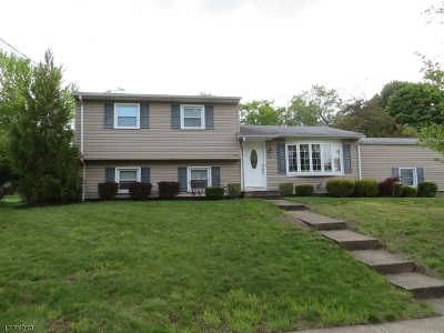Roxbury Twp. Single Family Home For Sale: 12 Brent Pl