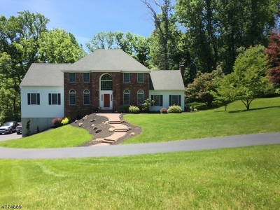Delaware Twp. Single Family Home For Sale: 27 Sutton Farm Rd