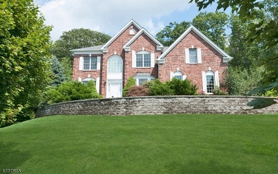 Mount Olive Twp. Single Family Home For Sale: 14 Greenbriar Ct