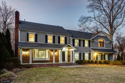 Single Family Home For Sale: 443 Long Hill Dr