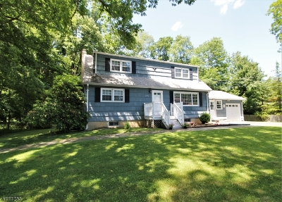 Randolph Twp. Single Family Home For Sale: 155 W Hanover Ave