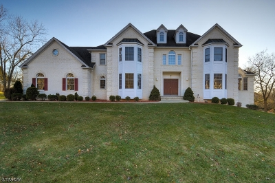 Bridgewater Twp. Single Family Home For Sale: 4 Yohn Dr