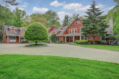 Scotch Plains Twp. Single Family Home For Sale: 1450 Rahway Rd