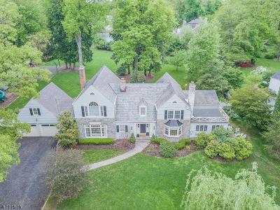 Madison Boro Single Family Home For Sale: 20 Park Ln, Aka 6 Pk
