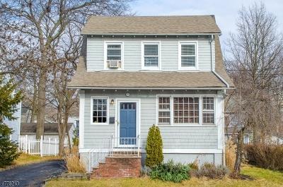 Millburn Twp. Single Family Home For Sale: 3 Oakdale Ave