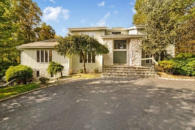 Randolph Twp. Single Family Home For Sale: 18 Judy Resnik Dr