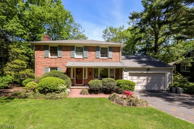 Summit Single Family Home For Sale: 15 Knob Hill Dr