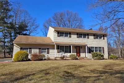 Scotch Plains Twp. Single Family Home For Sale: 3 Herbert Rd