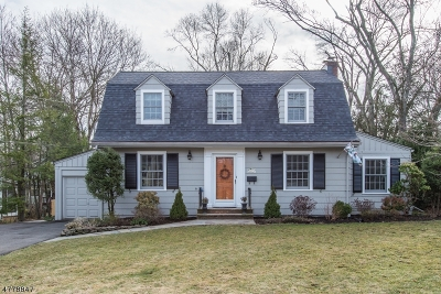 Chatham Boro Single Family Home For Sale: 82 Elmwood Ave