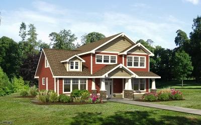 Montville Twp. Single Family Home For Sale: 116b Jacksonville Road