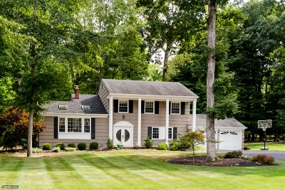 Randolph Twp. Single Family Home For Sale: 10 Old Chimney Rd