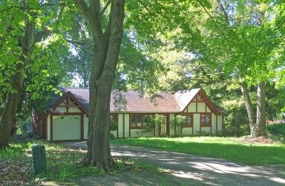 Mount Olive Twp. Single Family Home For Sale: 8 Karen Pl