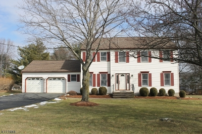 Sparta Twp. Single Family Home For Sale: 51 Pinkneyville Rd