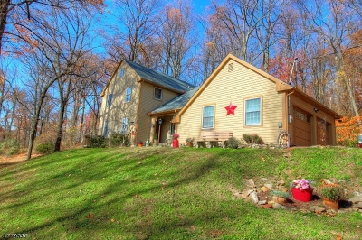 Alexandria Twp. Single Family Home For Sale: 92 Sweet Hollow Rd