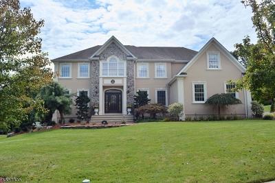 North Haledon Boro Single Family Home For Sale: 91 Sturr St