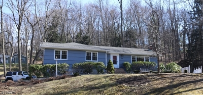 Morris Twp. Single Family Home For Sale: 9 Brookfield Way